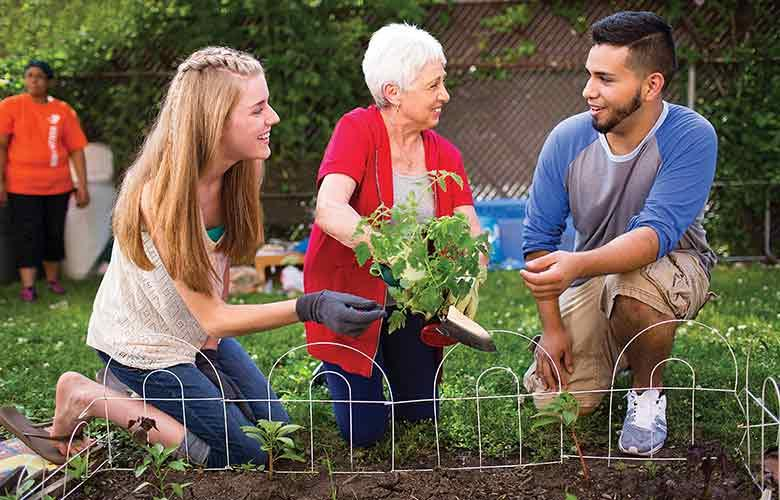 Community members plant garden together outdoors